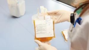 nurse hold a bag of plasma